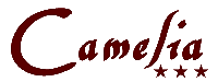 Cazare Baile Herculane - Pensiune Herculane - Pensiunea Camelia